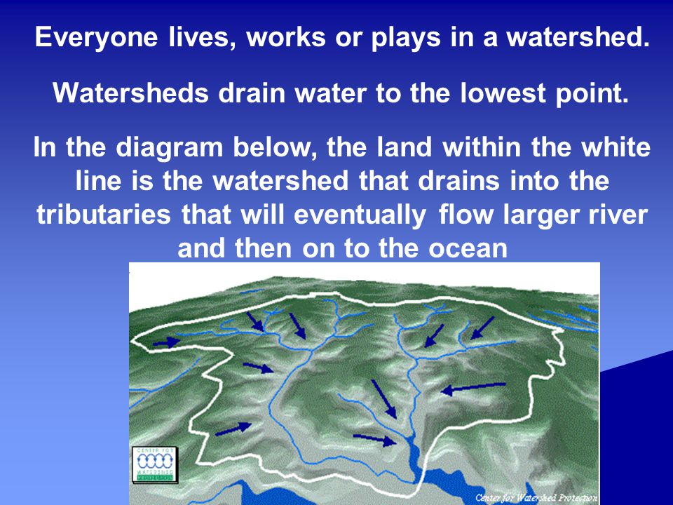 Everyone lives, works or plays in a watershed.