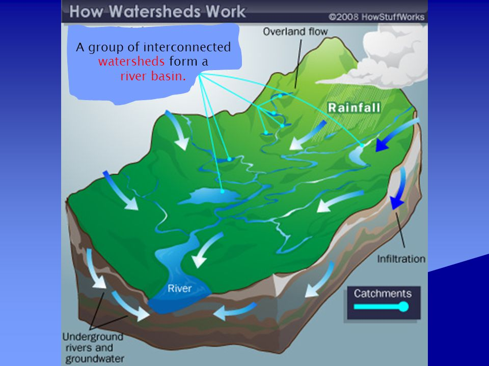 A group of interconnected watersheds form a
