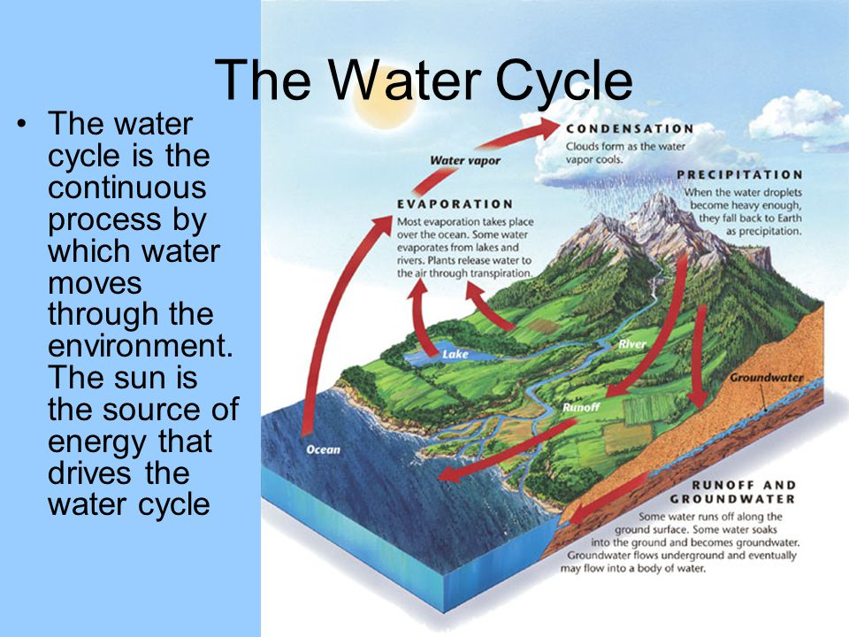 The Water Cycle Water is recycled through the water cycle. - ppt ...