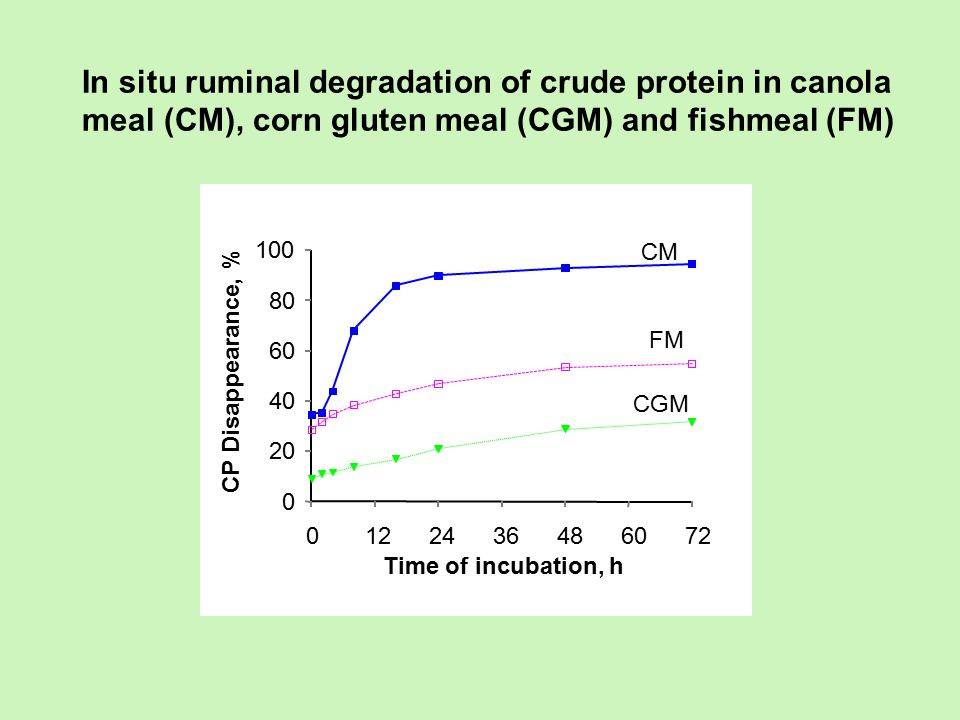 In situ ruminal degradation of crude protein in canola meal (CM), corn gluten meal (CGM) and fishmeal (FM)