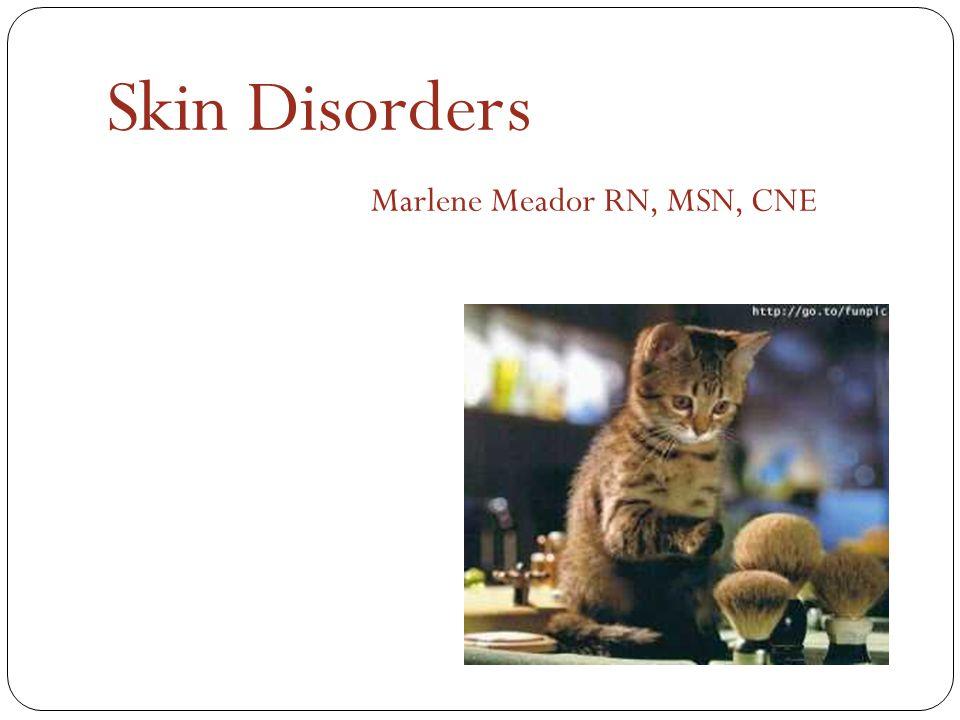 Marlene Meador RN, MSN, CNE