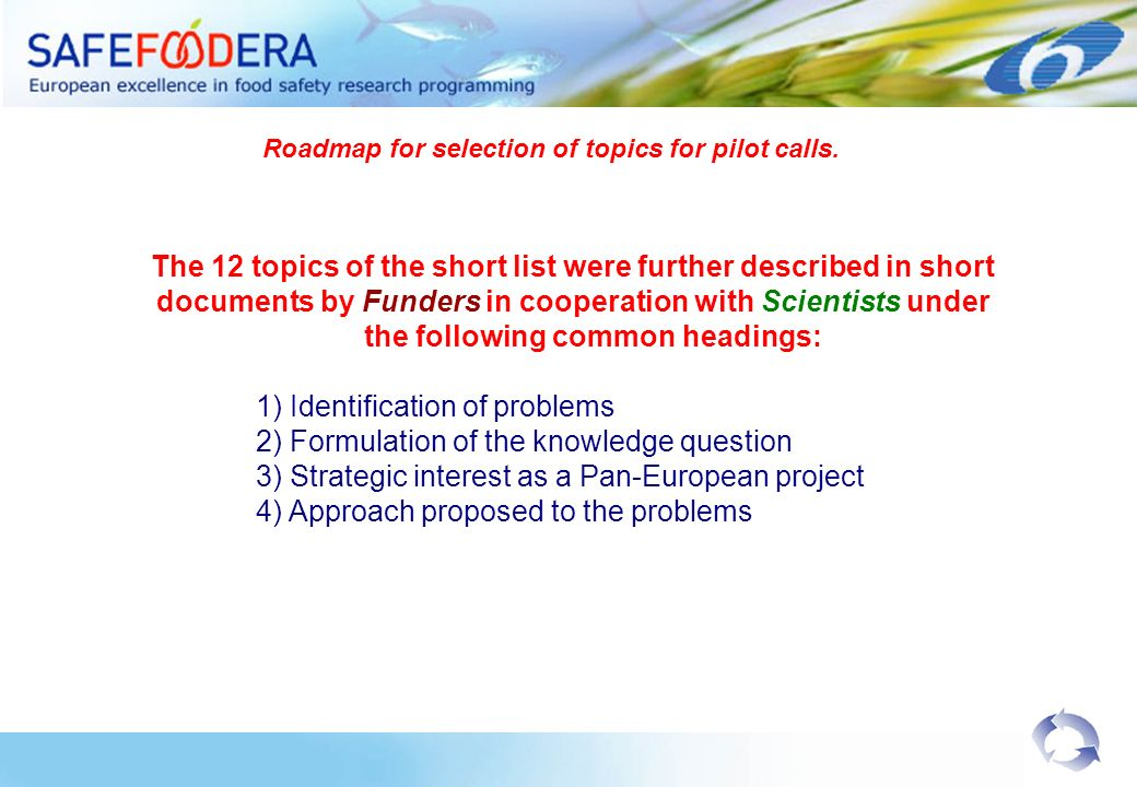 The 12 topics of the short list were further described in short