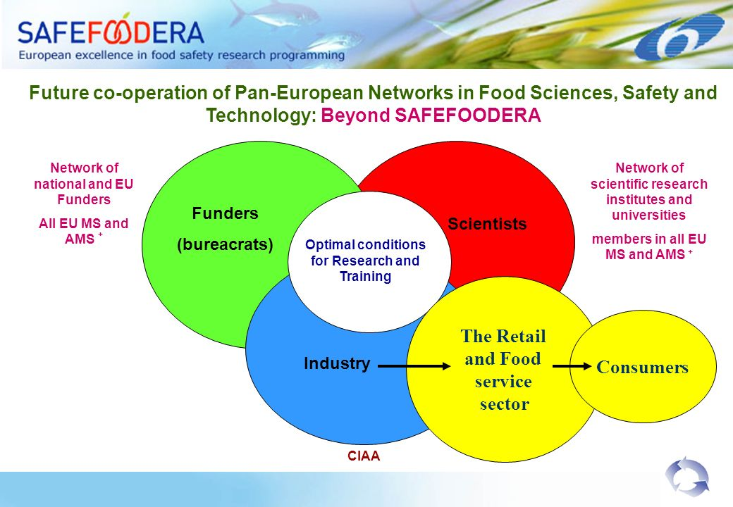 Future co-operation of Pan-European Networks in Food Sciences, Safety and Technology: Beyond SAFEFOODERA