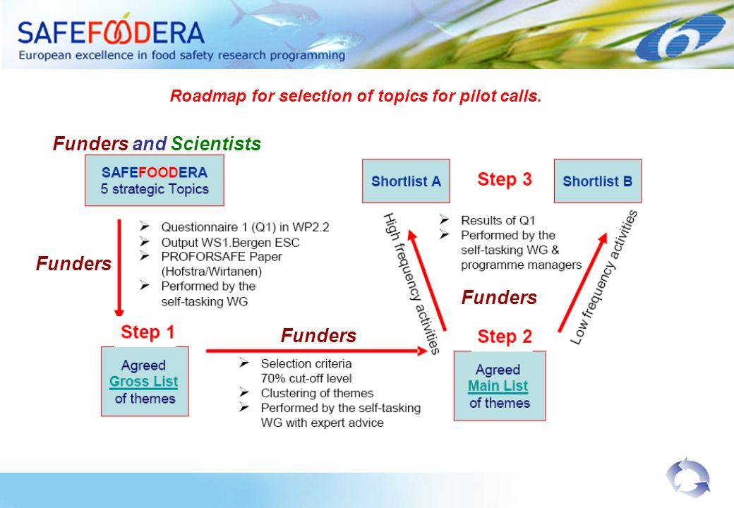 Roadmap for selection of topics for pilot calls.