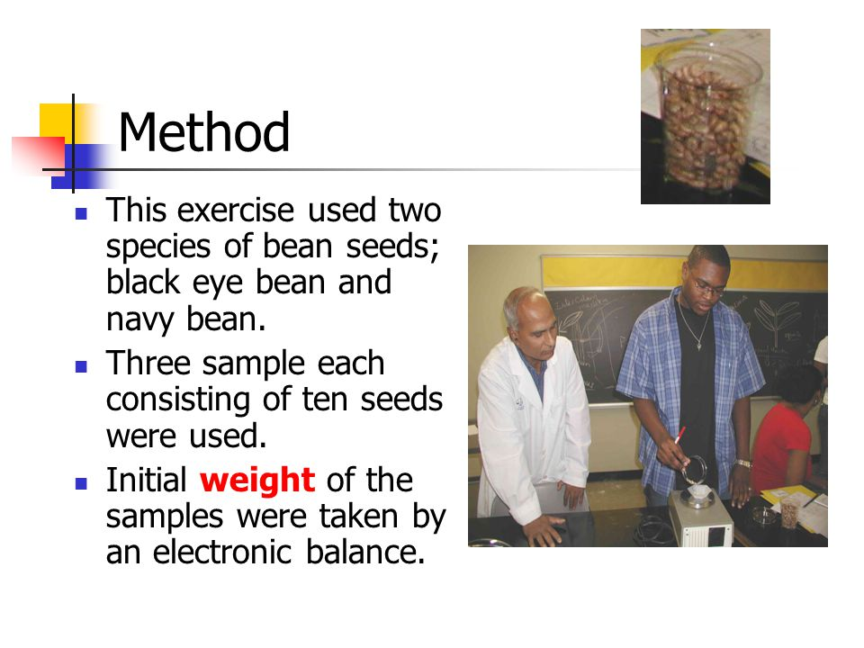 Method This exercise used two species of bean seeds; black eye bean and navy bean. Three sample each consisting of ten seeds were used.