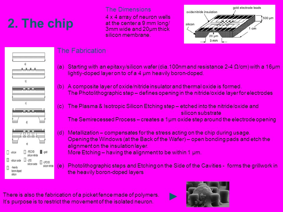 2. The chip ► The Fabrication The Dimensions