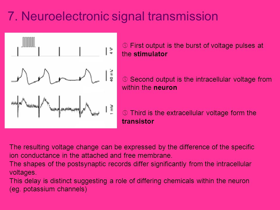 7. Neuroelectronic signal transmission