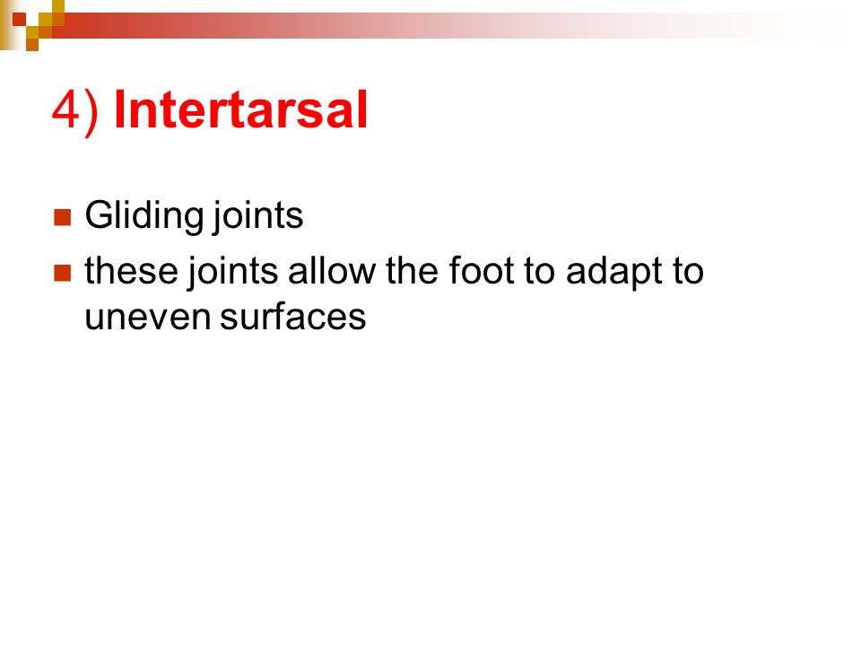 4) lntertarsal Gliding joints