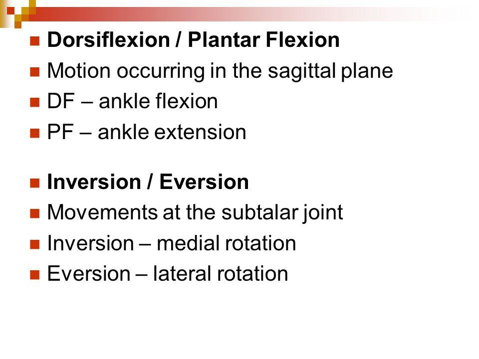Dorsiflexion / Plantar Flexion