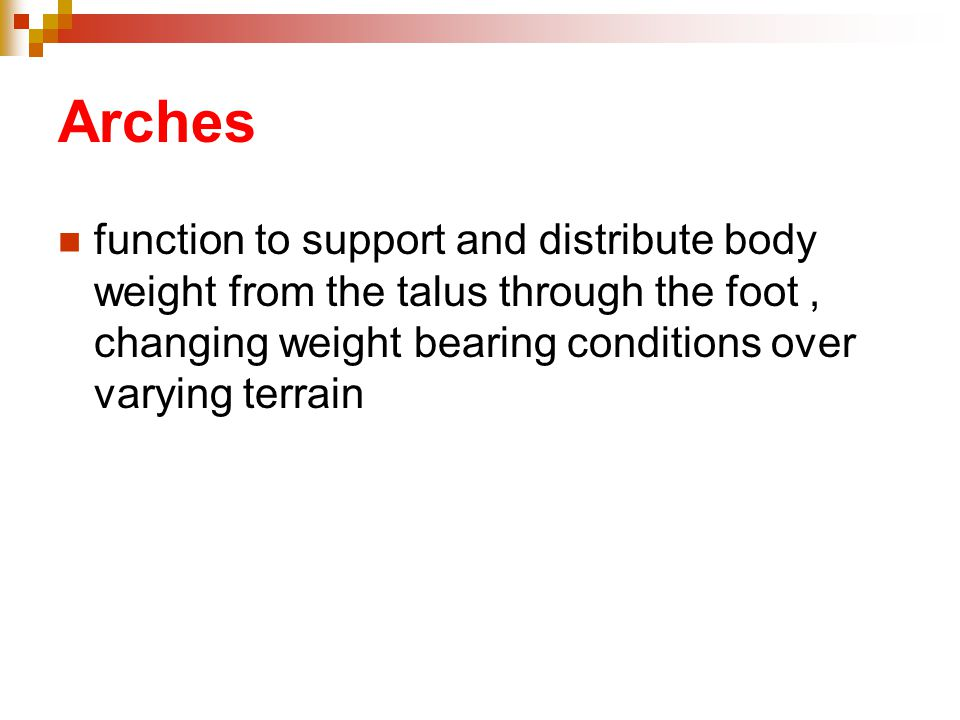 Arches function to support and distribute body weight from the talus through the foot , changing weight bearing conditions over varying terrain.