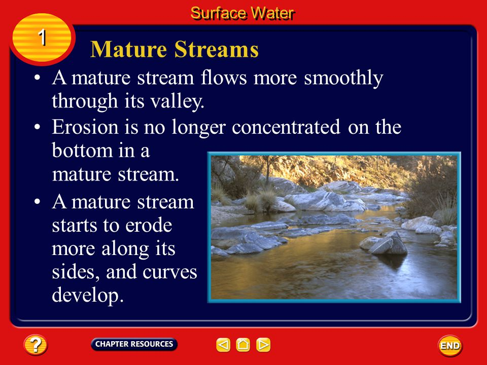 Surface Water 1. Mature Streams. A mature stream flows more smoothly through its valley. Erosion is no longer concentrated on the bottom in a.