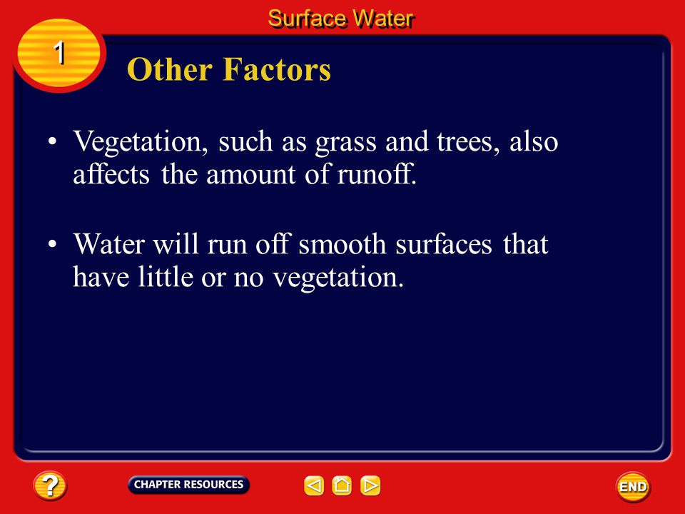 Surface Water 1. Other Factors. Vegetation, such as grass and trees, also affects the amount of runoff.
