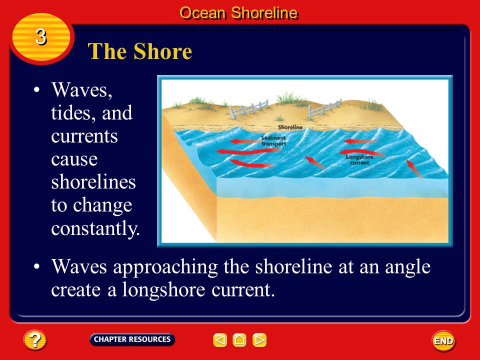 Ocean Shoreline 3. The Shore. Waves, tides, and currents cause shorelines to change constantly.