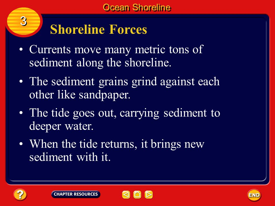 Ocean Shoreline 3. Shoreline Forces. Currents move many metric tons of sediment along the shoreline.