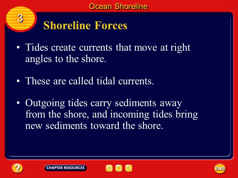 Ocean Shoreline 3. Shoreline Forces. Tides create currents that move at right angles to the shore.