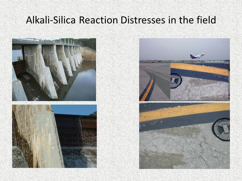 Alkali-Silica Reaction Distresses in the field