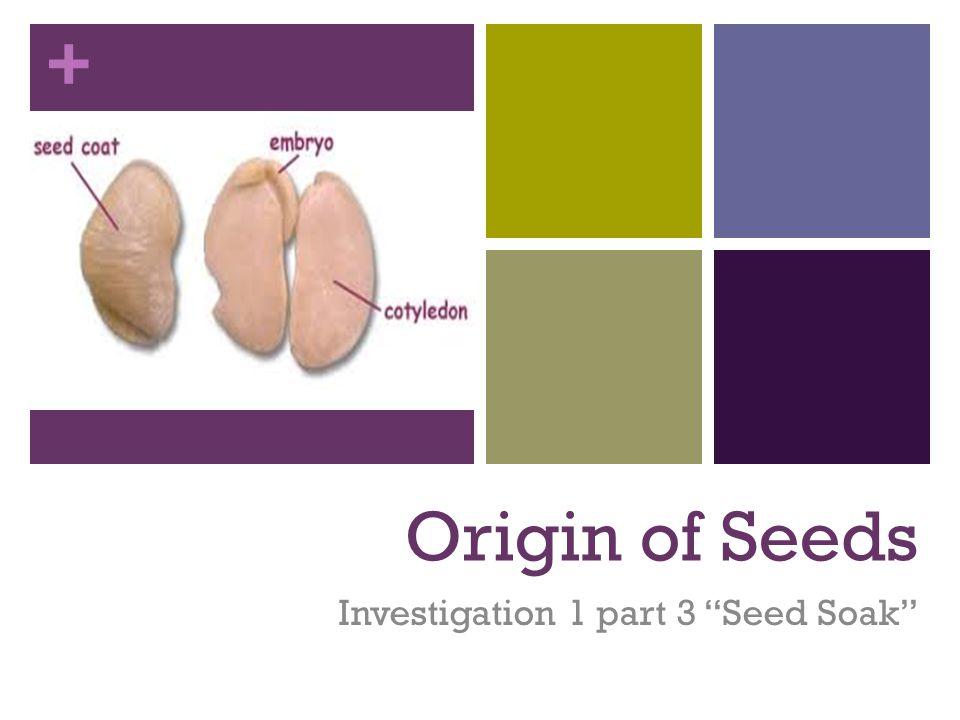 Investigation 1 part 3 Seed Soak