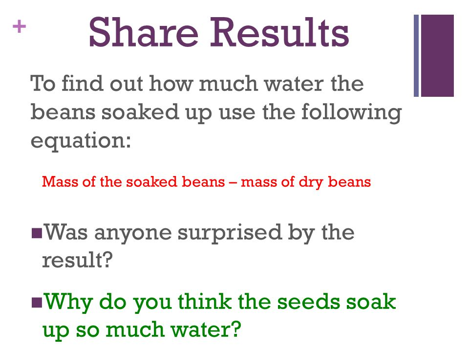 Share Results To find out how much water the beans soaked up use the following equation: Mass of the soaked beans – mass of dry beans.