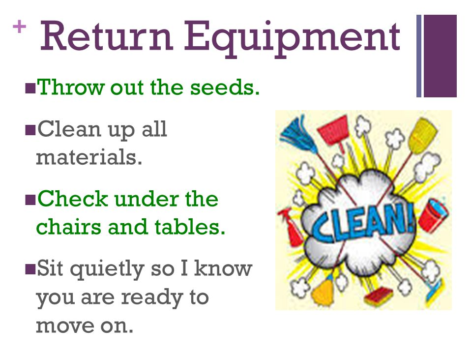 Return Equipment Throw out the seeds. Clean up all materials.