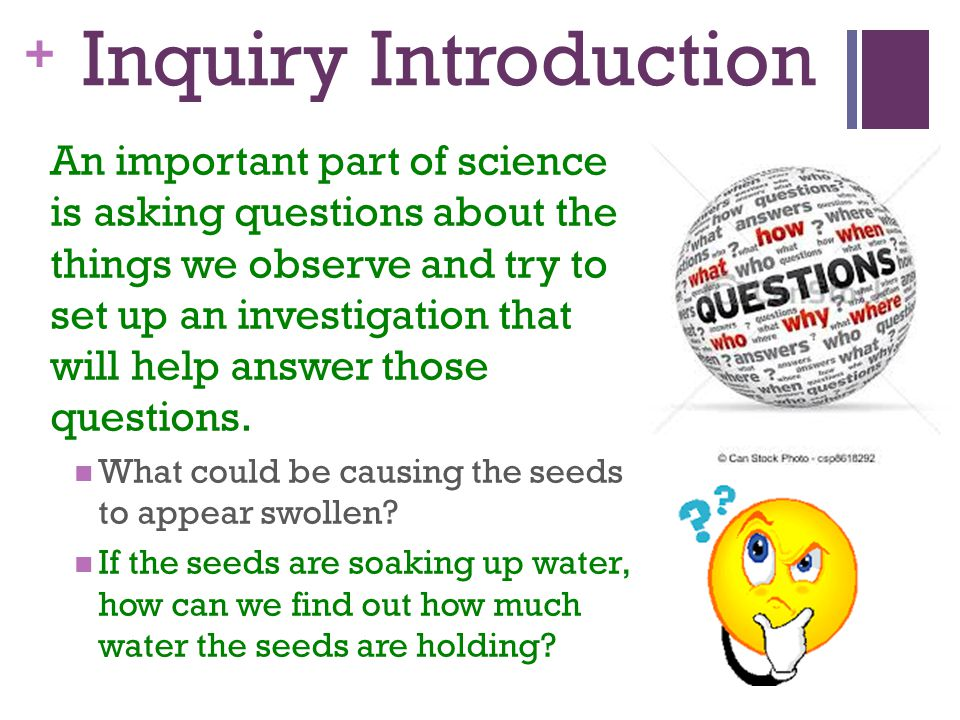Inquiry Introduction