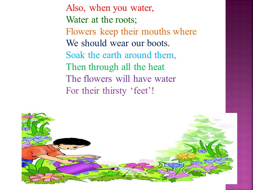 Also, when you water, Water at the roots; Flowers keep their mouths where. We should wear our boots.