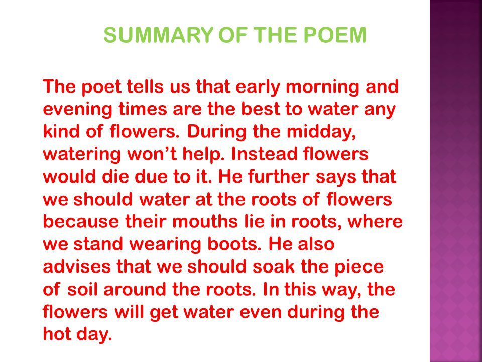 SUMMARY OF THE POEM