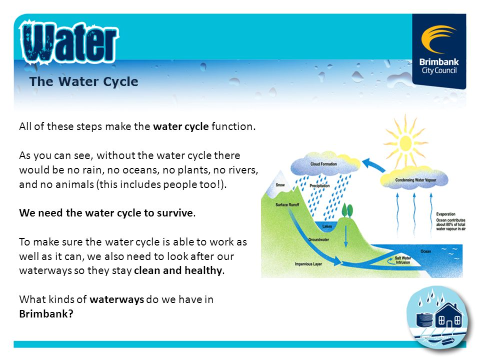 All of these steps make the water cycle function.