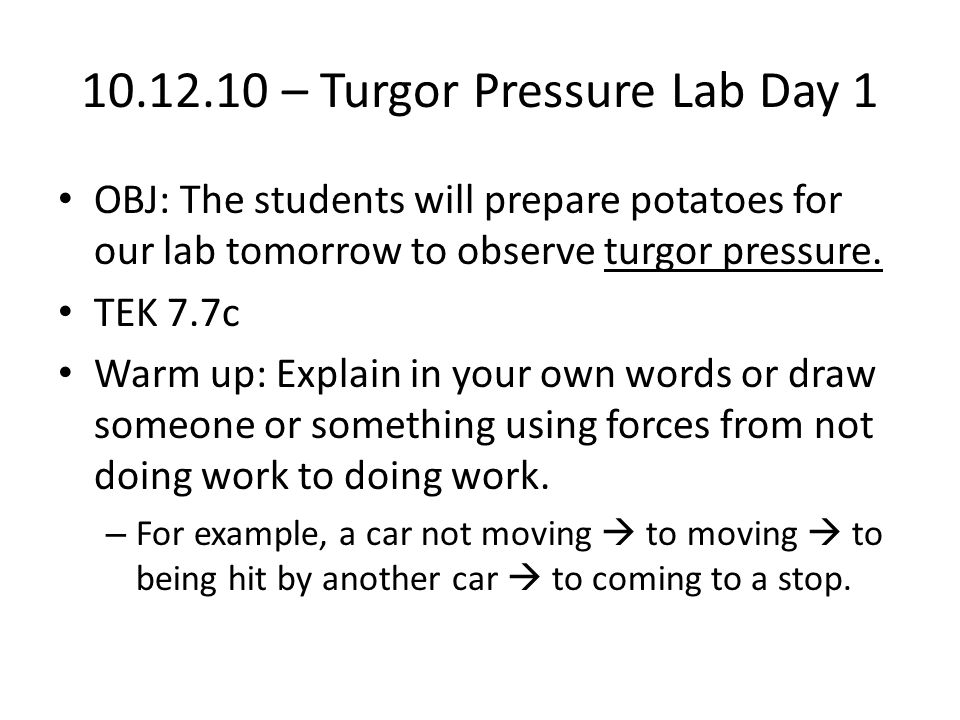 10.12.10 – Turgor Pressure Lab Day 1