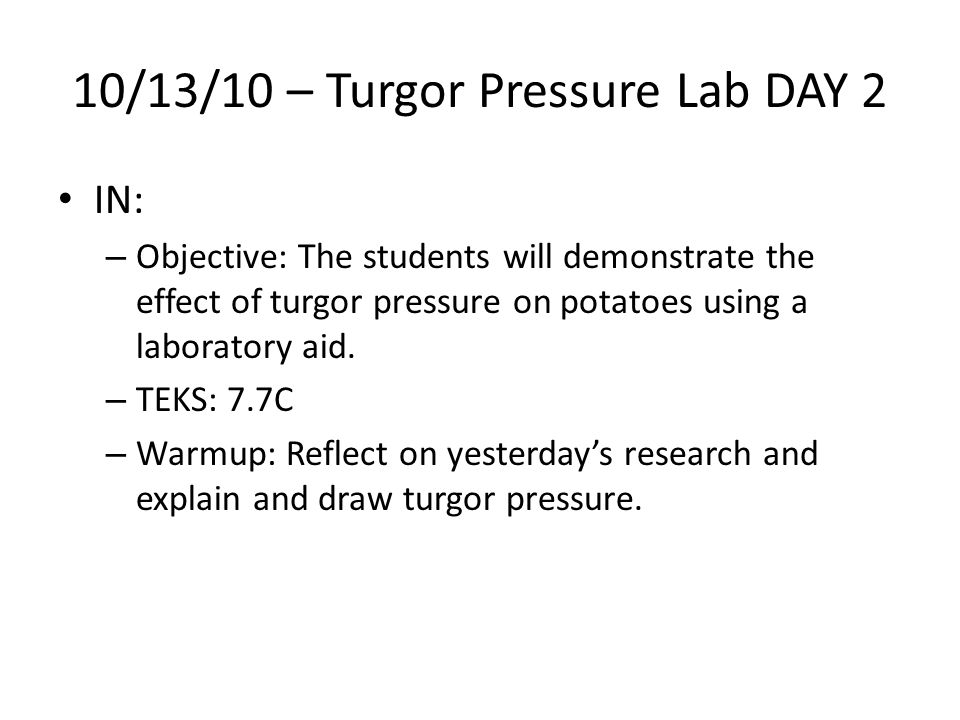 10/13/10 – Turgor Pressure Lab DAY 2