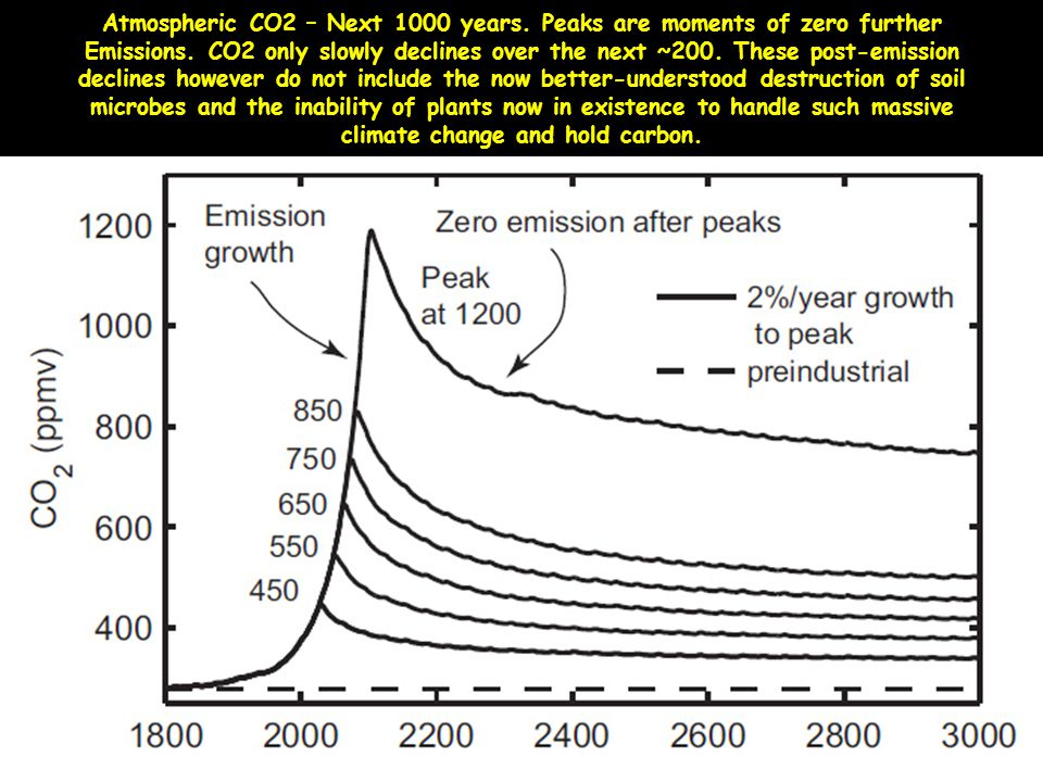 Atmospheric CO2 – Next 1000 years