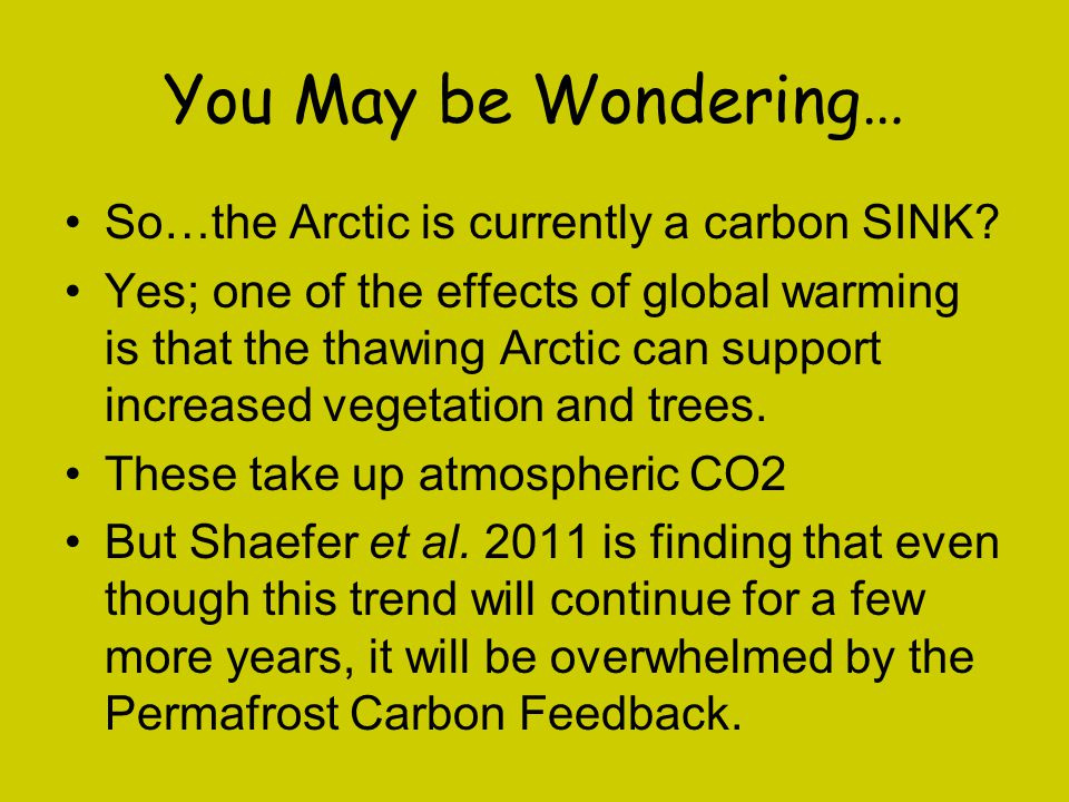 You May be Wondering… So…the Arctic is currently a carbon SINK
