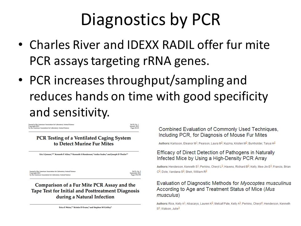 Diagnostics by PCR Charles River and IDEXX RADIL offer fur mite PCR assays targeting rRNA genes.