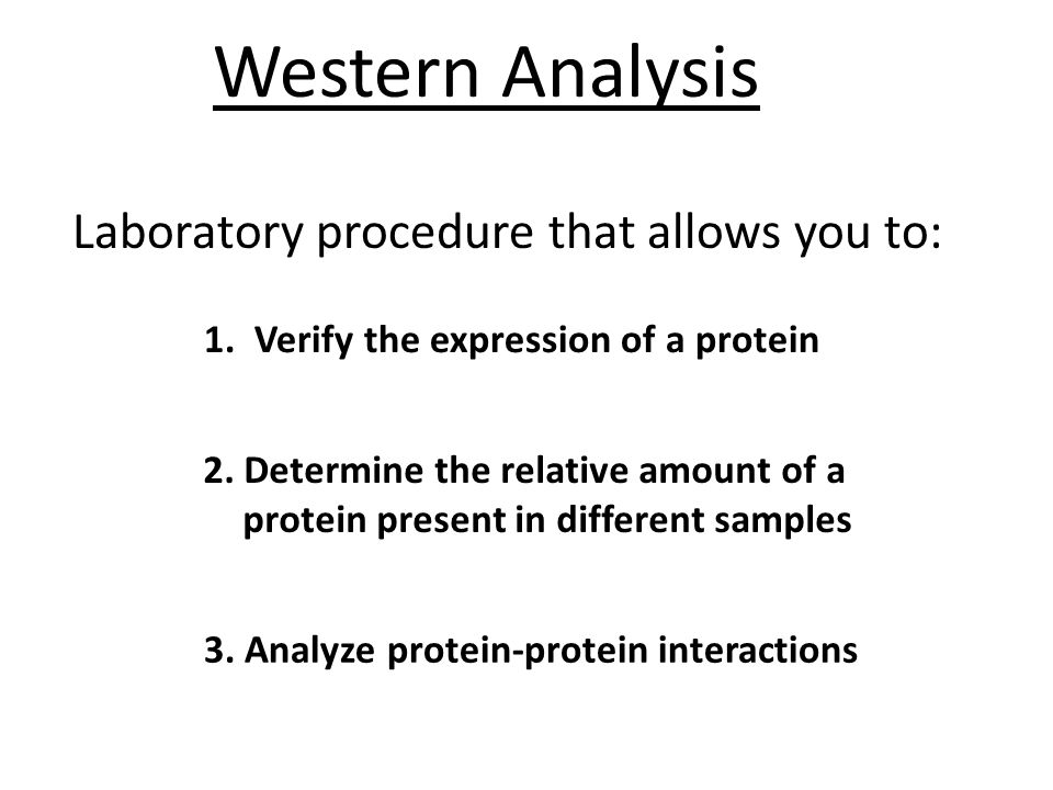 Western Analysis Laboratory procedure that allows you to: