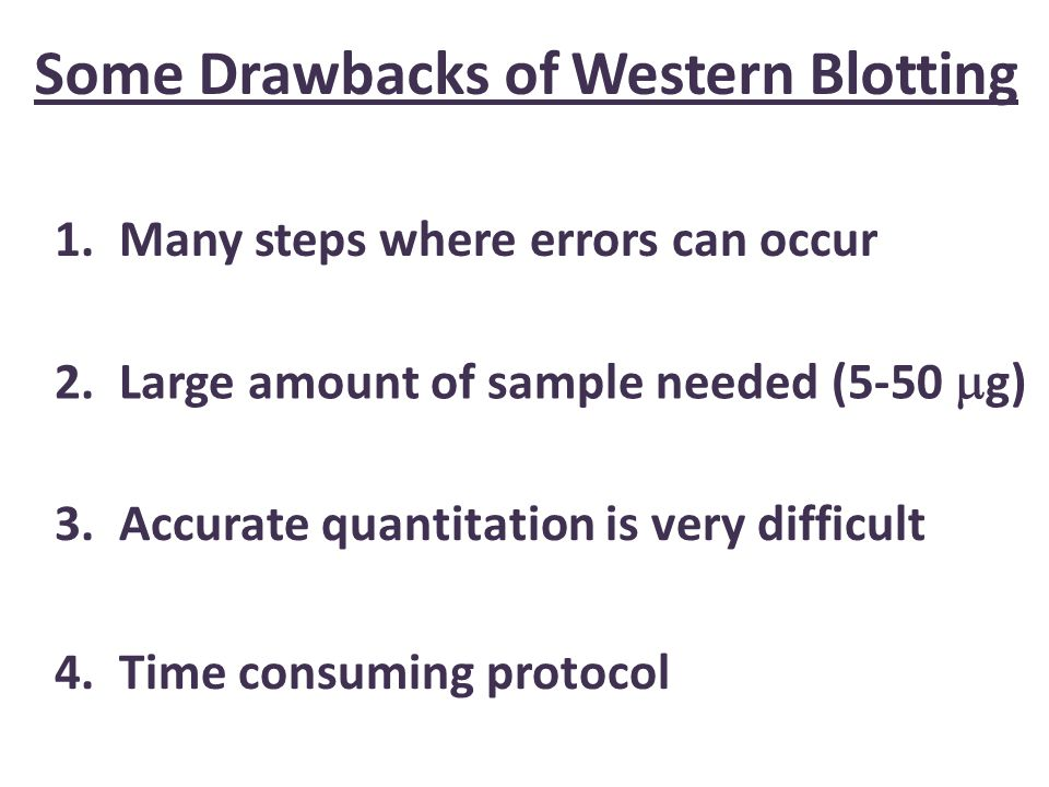 Some Drawbacks of Western Blotting