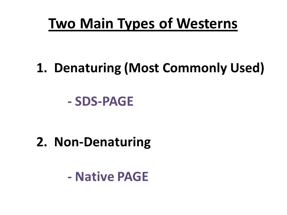 Two Main Types of Westerns