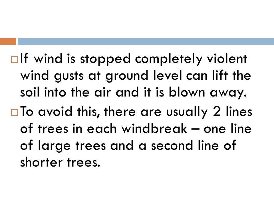 If wind is stopped completely violent wind gusts at ground level can lift the soil into the air and it is blown away.