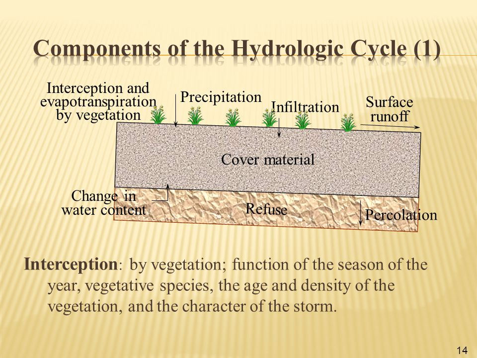Components of the Hydrologic Cycle (1)