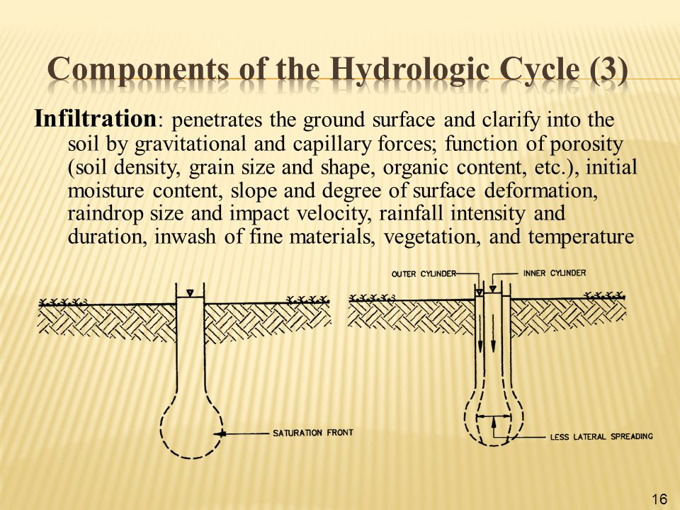 Components of the Hydrologic Cycle (3)