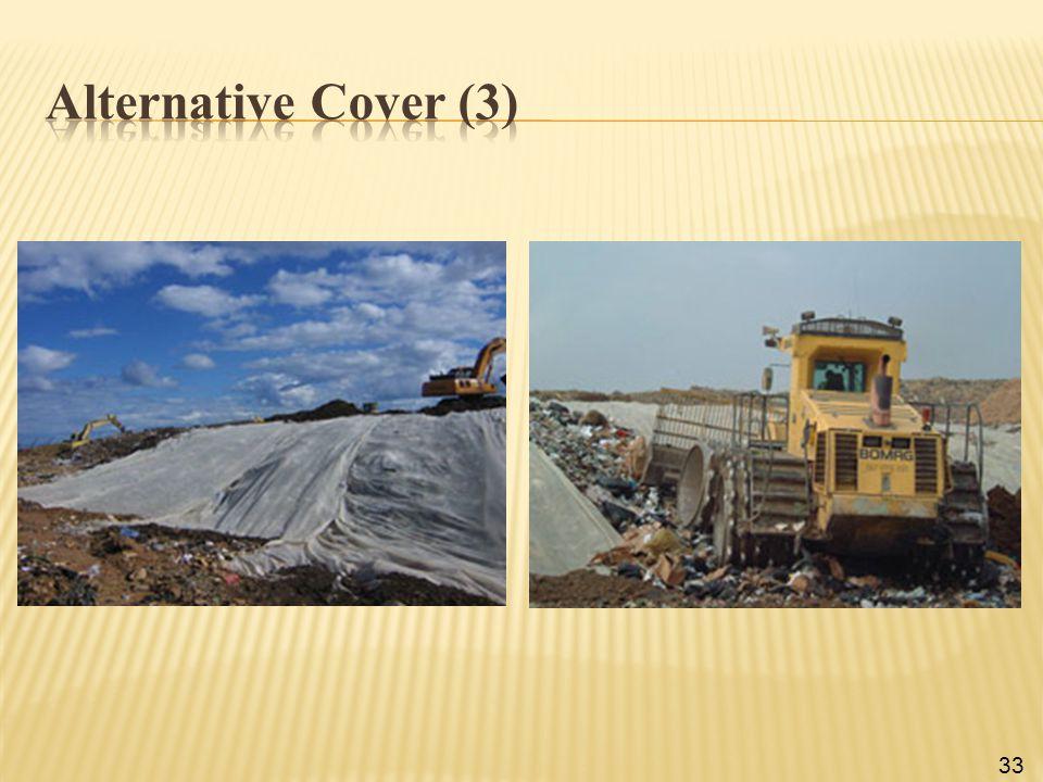 Alternative Cover (3)