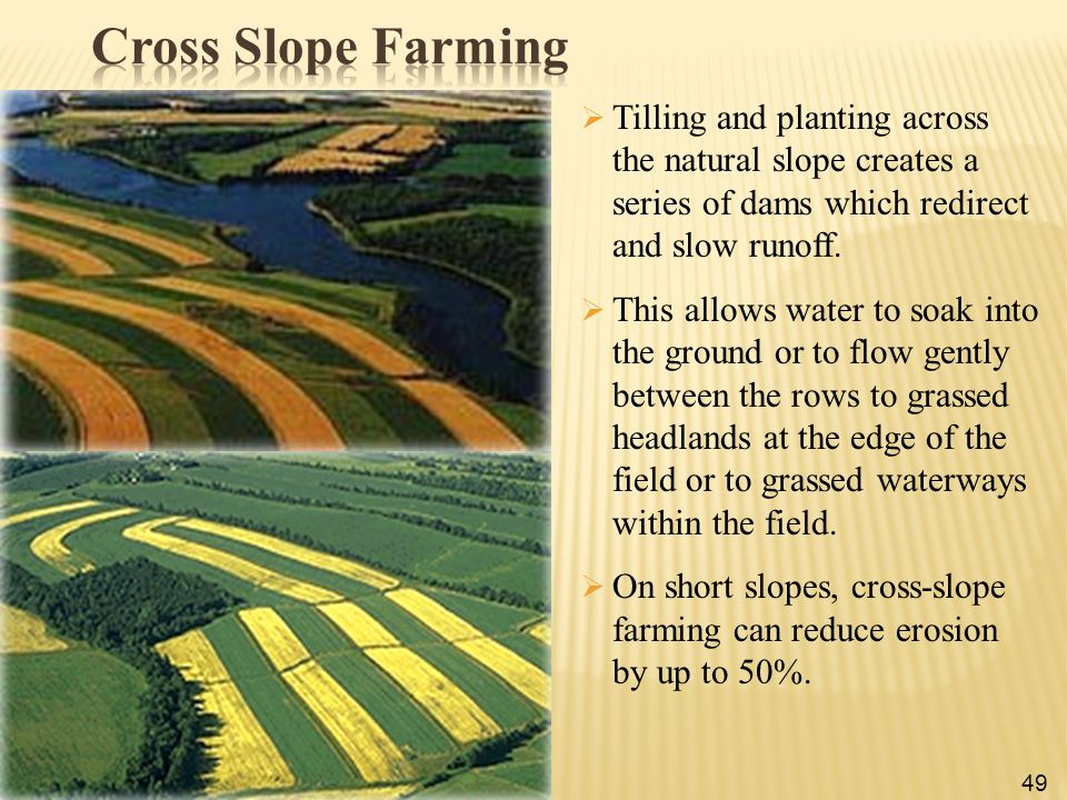 Cross Slope Farming Tilling and planting across the natural slope creates a series of dams which redirect and slow runoff.