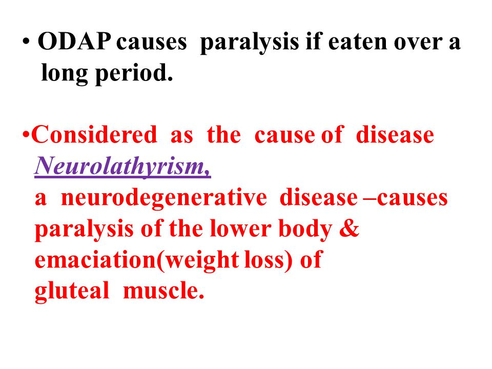 ODAP causes paralysis if eaten over a