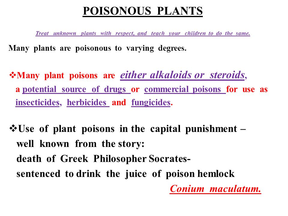 POISONOUS PLANTS Use of plant poisons in the capital punishment –