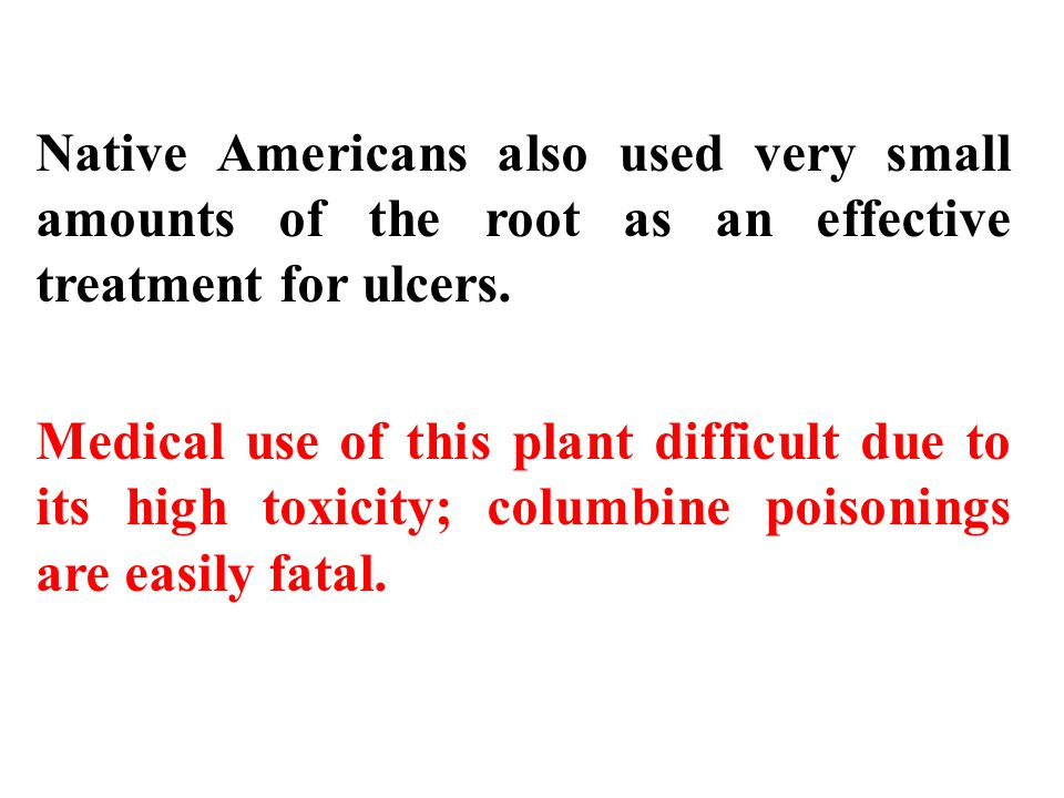 Native Americans also used very small amounts of the root as an effective treatment for ulcers.