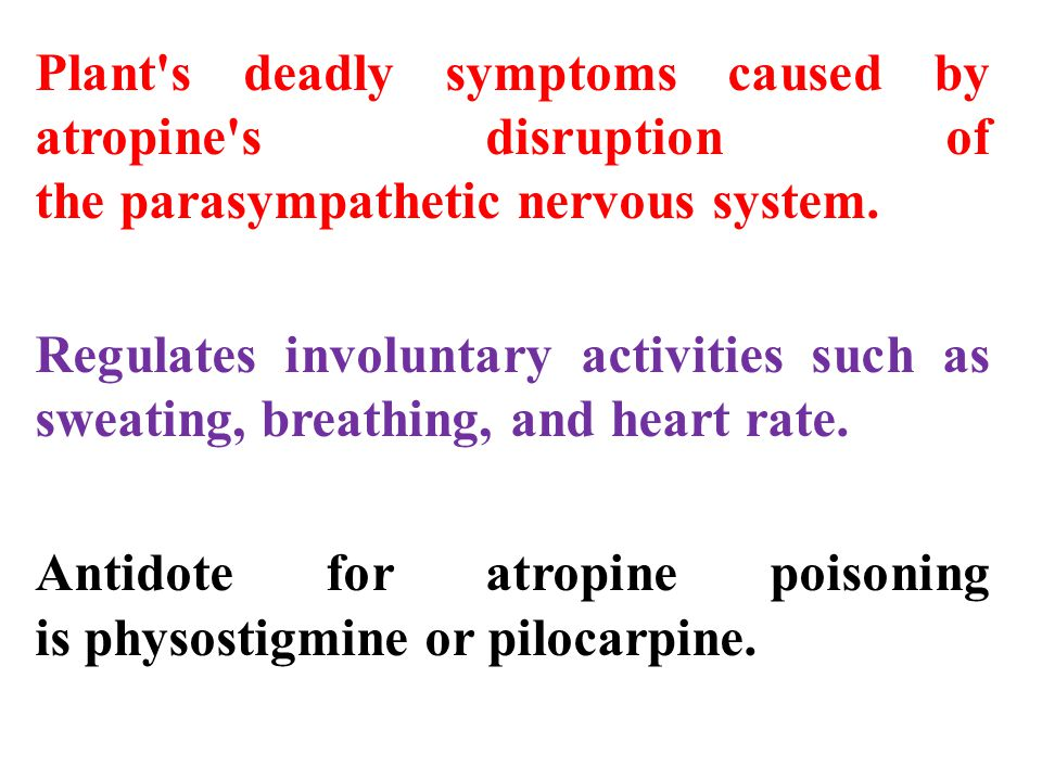 Plant s deadly symptoms caused by atropine s disruption of the parasympathetic nervous system.