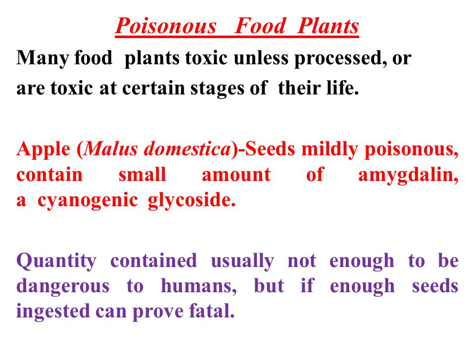 Poisonous Food Plants Many food plants toxic unless processed, or