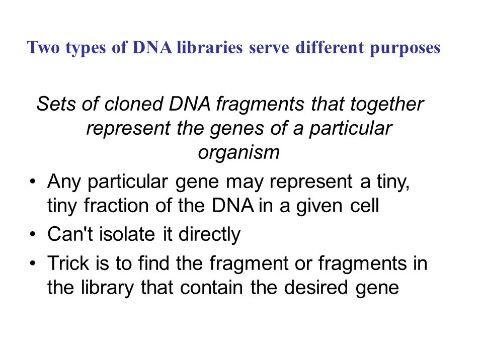 Two types of DNA libraries serve different purposes