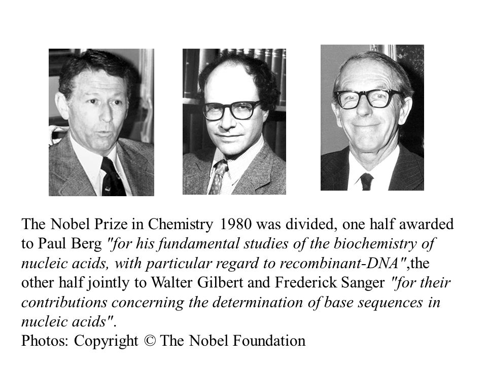 The Nobel Prize in Chemistry 1980 was divided, one half awarded to Paul Berg for his fundamental studies of the biochemistry of nucleic acids, with particular regard to recombinant-DNA ,the other half jointly to Walter Gilbert and Frederick Sanger for their contributions concerning the determination of base sequences in nucleic acids .
