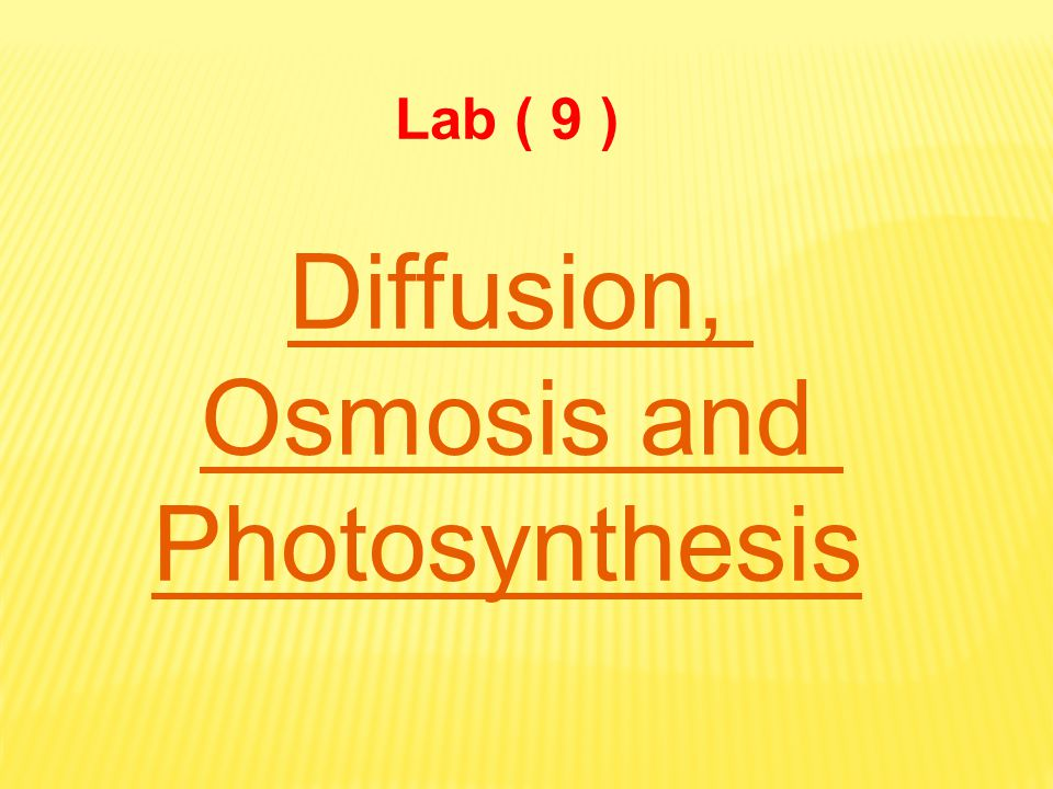 Diffusion, Osmosis and Photosynthesis