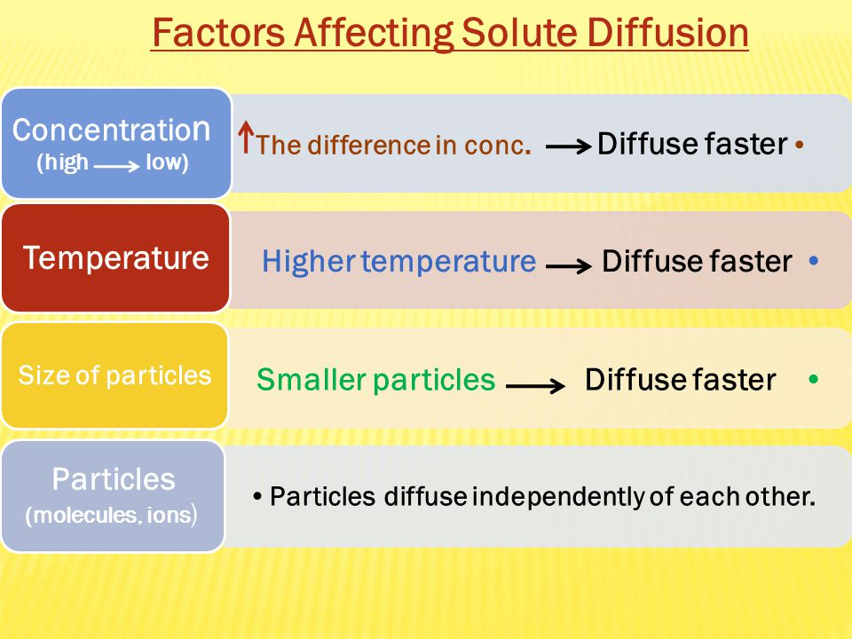 Factors Affecting Solute Diffusion