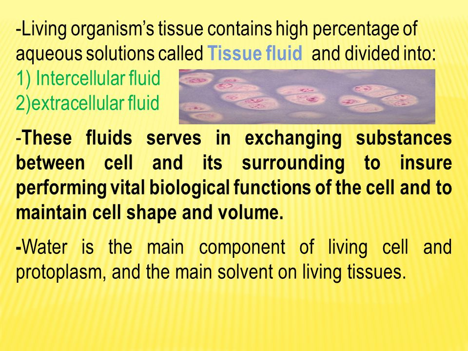 Living organism's tissue contains high percentage of aqueous solutions called Tissue fluid and divided into: